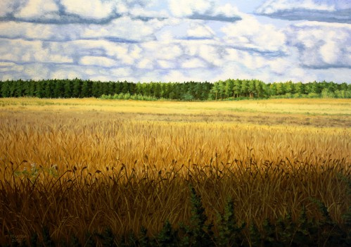 The Fields of Corn | 50 x 70 cm