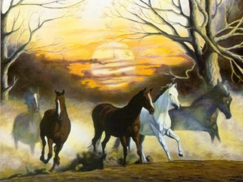 Horses with the Sunset   80 x 60 cm